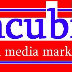 Havelberg_mcubic_Logo.jpg